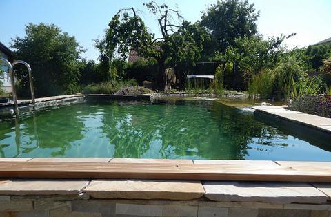 gartengestaltung laher schwimmteiche naturpool. Black Bedroom Furniture Sets. Home Design Ideas
